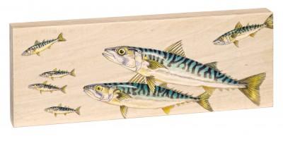 30-Makrelenpaar
